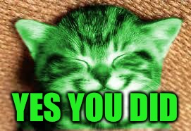 happy RayCat | YES YOU DID | image tagged in happy raycat | made w/ Imgflip meme maker
