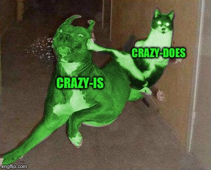 RayCat kicking RayDog | CRAZY-IS CRAZY-DOES | image tagged in raycat kicking raydog | made w/ Imgflip meme maker
