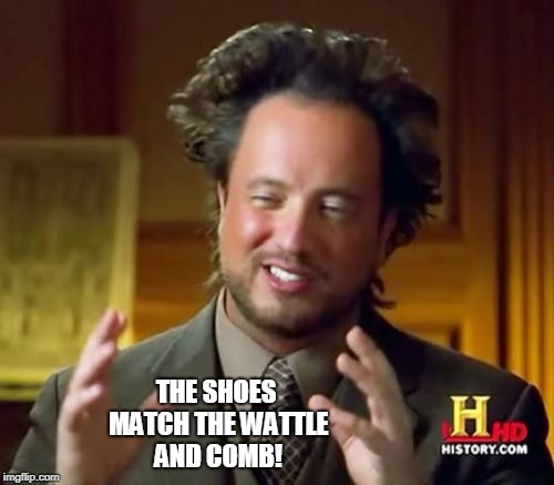 Ancient Aliens Meme | THE SHOES MATCH THE WATTLE AND COMB! | image tagged in memes,ancient aliens | made w/ Imgflip meme maker