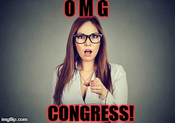 O M G CONGRESS! | made w/ Imgflip meme maker