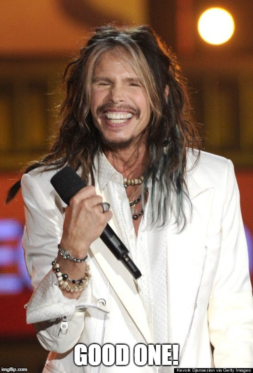 Steven Tyler | GOOD ONE! | image tagged in steven tyler | made w/ Imgflip meme maker