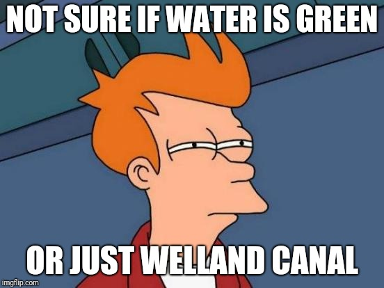 Welland  | NOT SURE IF WATER IS GREEN OR JUST WELLAND CANAL | image tagged in memes,futurama fry | made w/ Imgflip meme maker