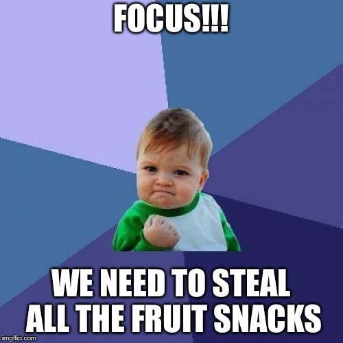 Success Kid | FOCUS!!! WE NEED TO STEAL ALL THE FRUIT SNACKS | image tagged in memes,success kid | made w/ Imgflip meme maker