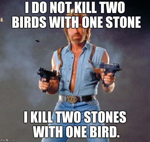 Chuck Norris Guns Meme | I DO NOT KILL TWO BIRDS WITH ONE STONE I KILL TWO STONES WITH ONE BIRD. | image tagged in memes,chuck norris guns,chuck norris | made w/ Imgflip meme maker