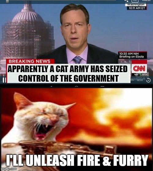 The Fur is Flying | APPARENTLY A CAT ARMY HAS SEIZED CONTROL OF THE GOVERNMENT I'LL UNLEASH FIRE & FURRY | image tagged in funny memes,cnn breaking news template,cats,cats with guns | made w/ Imgflip meme maker
