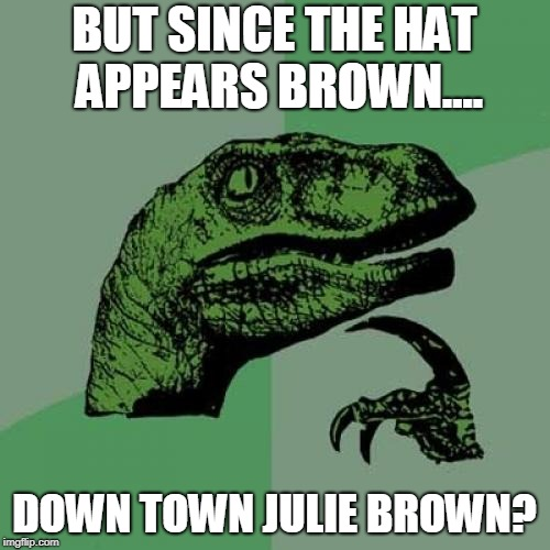 Philosoraptor Meme | BUT SINCE THE HAT APPEARS BROWN.... DOWN TOWN JULIE BROWN? | image tagged in memes,philosoraptor | made w/ Imgflip meme maker