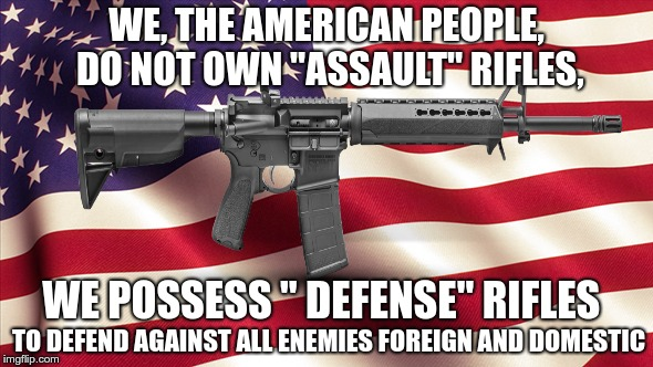 "The 2nd Amendment  | WE, THE AMERICAN PEOPLE, DO NOT OWN ""ASSAULT"" RIFLES, WE POSSESS "" DEFENSE"" RIFLES TO DEFEND AGAINST ALL ENEMIES FOREIGN AND DOMESTIC 