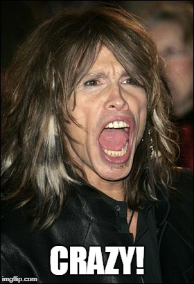 Steven Tyler | CRAZY! | image tagged in steven tyler | made w/ Imgflip meme maker