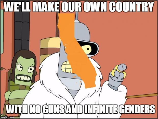 California in a nutshell | WE'LL MAKE OUR OWN COUNTRY WITH NO GUNS AND INFINITE GENDERS | image tagged in memes,bender,funny,california,liberals,america | made w/ Imgflip meme maker