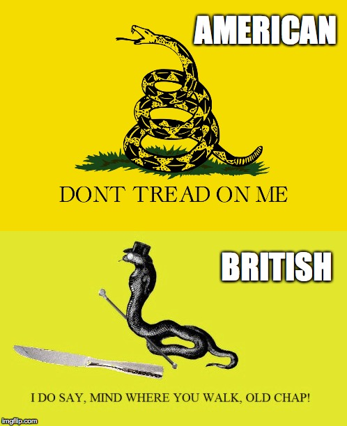 AMERICAN BRITISH | image tagged in gadsden flag,america,british,memes | made w/ Imgflip meme maker