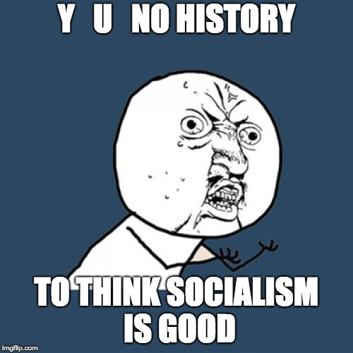 Y U No Meme | Y   U   NO HISTORY TO THINK SOCIALISM IS GOOD | image tagged in memes,y u no | made w/ Imgflip meme maker