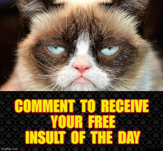 Let Me Whisper Sweet Nothings Into Your Ear |  COMMENT  TO  RECEIVE  YOUR  FREE  INSULT  OF  THE  DAY | image tagged in grumpy cat,insults,free,comments,rude,meanwhile on ingflip | made w/ Imgflip meme maker