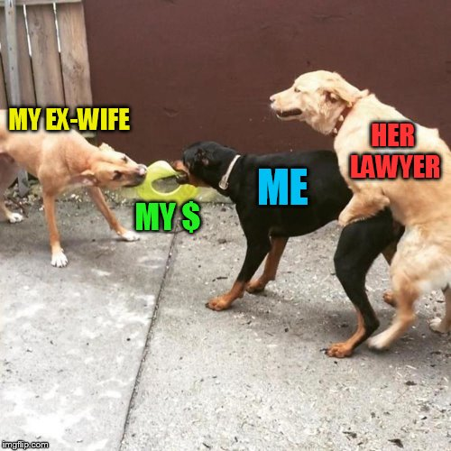 This Is My Life | MY EX-WIFE MY $ ME HER LAWYER | image tagged in this is my life | made w/ Imgflip meme maker