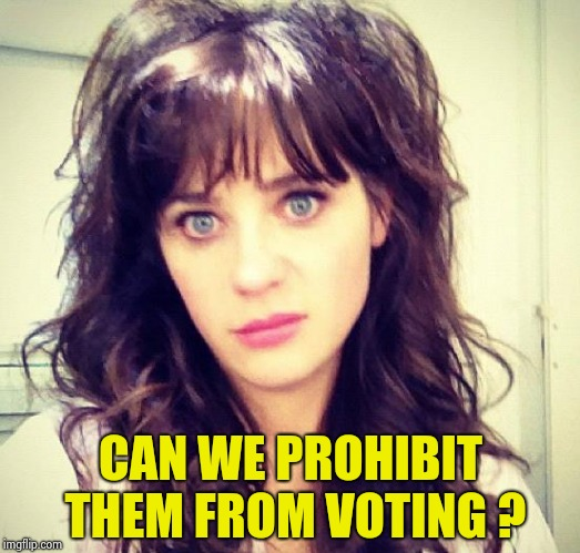 Zooey Deschanel | CAN WE PROHIBIT THEM FROM VOTING ? | image tagged in zooey deschanel | made w/ Imgflip meme maker