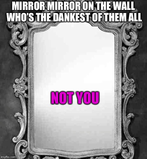 Dankest of them all | MIRROR MIRROR ON THE WALL WHO'S THE DANKEST OF THEM ALL NOT YOU | image tagged in mirror | made w/ Imgflip meme maker