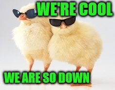 WE'RE COOL WE ARE SO DOWN | made w/ Imgflip meme maker