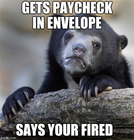 Confession Bear Meme | GETS PAYCHECK IN ENVELOPE SAYS YOUR FIRED | image tagged in memes,confession bear | made w/ Imgflip meme maker