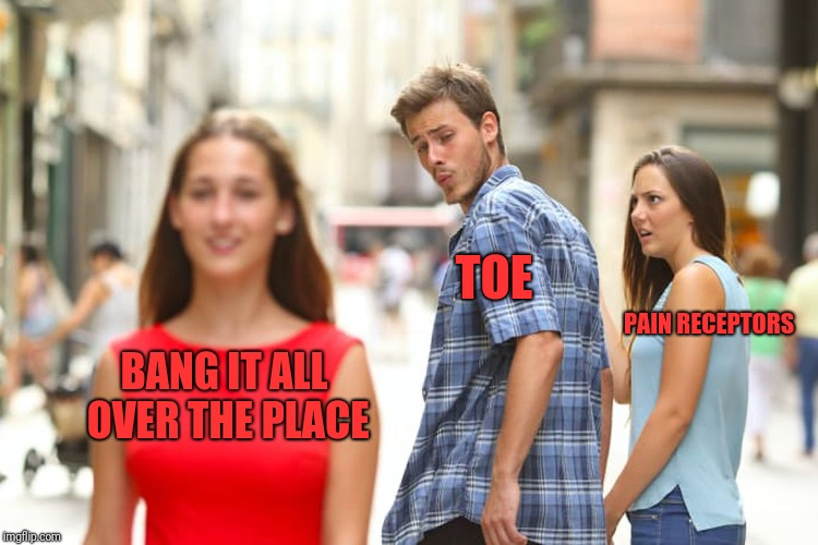 Distracted Boyfriend Meme | BANG IT ALL OVER THE PLACE TOE PAIN RECEPTORS | image tagged in memes,distracted boyfriend | made w/ Imgflip meme maker