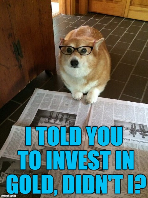 Should've listened... :) | I TOLD YOU TO INVEST IN GOLD, DIDN'T I? | image tagged in newspaper dog,memes,investments,money | made w/ Imgflip meme maker