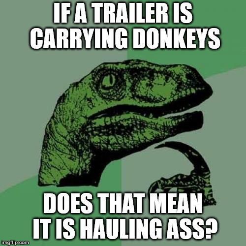 Philosoraptor Meme | IF A TRAILER IS CARRYING DONKEYS DOES THAT MEAN IT IS HAULING ASS? | image tagged in memes,philosoraptor | made w/ Imgflip meme maker