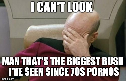 Captain Picard Facepalm Meme | I CAN'T LOOK MAN THAT'S THE BIGGEST BUSH I'VE SEEN SINCE 70S PORNOS | image tagged in memes,captain picard facepalm | made w/ Imgflip meme maker