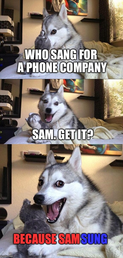 Bad Pun Dog Meme | WHO SANG FOR A PHONE COMPANY SAM. GET IT? BECAUSE SAM SUNG | image tagged in memes,bad pun dog | made w/ Imgflip meme maker