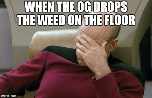 Captain Picard Facepalm Meme | WHEN THE OG DROPS THE WEED ON THE FLOOR | image tagged in memes,captain picard facepalm | made w/ Imgflip meme maker
