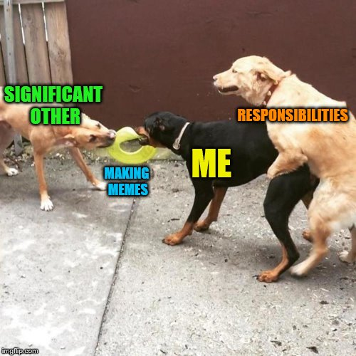 Thanks to DashHopes for the template! | SIGNIFICANT OTHER MAKING MEMES ME RESPONSIBILITIES | image tagged in this is my life,memes,responsibilities,making memes,significant other | made w/ Imgflip meme maker