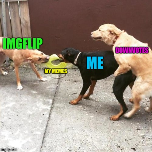 Another day... | IMGFLIP MY MEMES ME DOWNVOTES | image tagged in this is my life | made w/ Imgflip meme maker