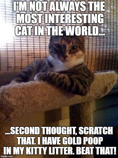 The Most Interesting Cat In The World Meme | I'M NOT ALWAYS THE MOST INTERESTING CAT IN THE WORLD... ...SECOND THOUGHT, SCRATCH THAT. I HAVE GOLD POOP IN MY KITTY LITTER. BEAT THAT! | image tagged in memes,the most interesting cat in the world | made w/ Imgflip meme maker