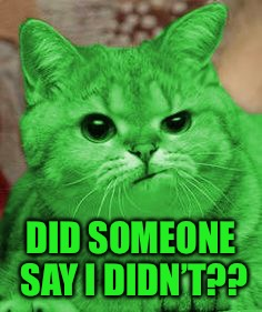 RayCat Annoyed | DID SOMEONE SAY I DIDN'T?? | image tagged in raycat annoyed | made w/ Imgflip meme maker