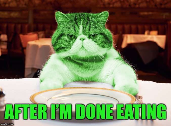 RayCat Hungry | AFTER I'M DONE EATING | image tagged in raycat hungry | made w/ Imgflip meme maker