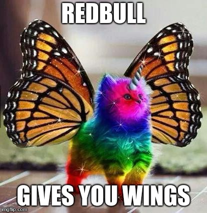 Rainbow unicorn butterfly kitten | REDBULL GIVES YOU WINGS | image tagged in rainbow unicorn butterfly kitten | made w/ Imgflip meme maker