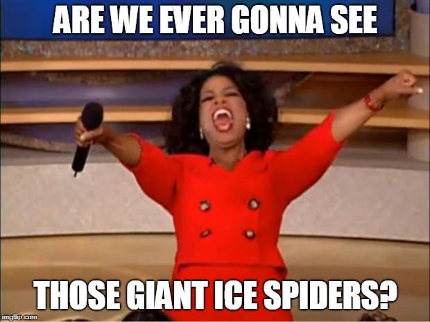 Oprah You Get A Meme | ARE WE EVER GONNA SEE THOSE GIANT ICE SPIDERS? | image tagged in memes,oprah you get a | made w/ Imgflip meme maker