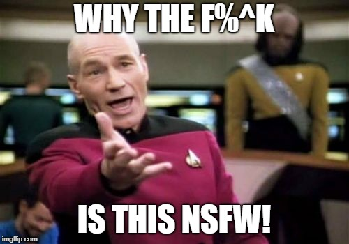 Picard Wtf Meme | WHY THE F%^K IS THIS NSFW! | image tagged in memes,picard wtf | made w/ Imgflip meme maker