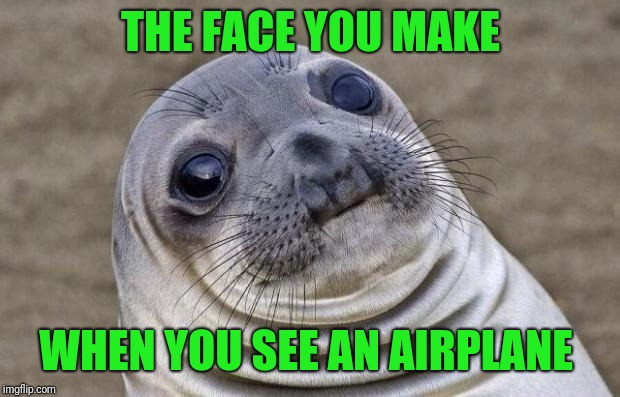 Awkward Moment Sealion Meme | THE FACE YOU MAKE WHEN YOU SEE AN AIRPLANE | image tagged in memes,awkward moment sealion | made w/ Imgflip meme maker