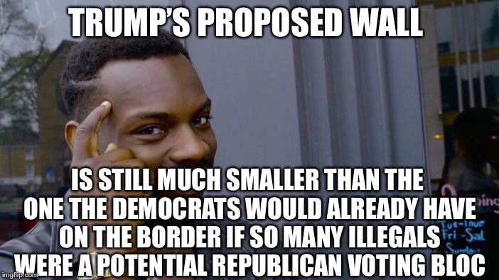 Roll Safe Think About It Meme | TRUMP'S PROPOSED WALL IS STILL MUCH SMALLER THAN THE ONE THE DEMOCRATS WOULD ALREADY HAVE ON THE BORDER IF SO MANY ILLEGALS WERE A POTENTIAL | image tagged in memes,roll safe think about it | made w/ Imgflip meme maker