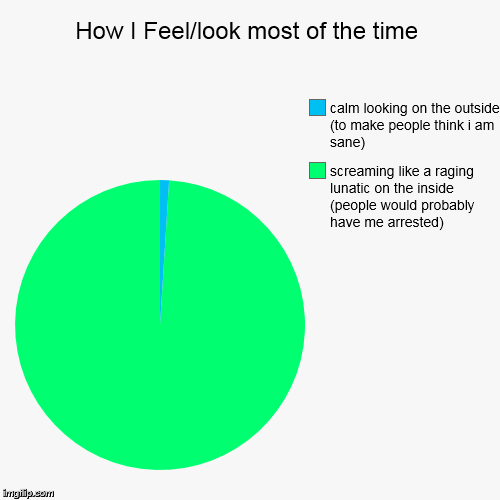 How I Feel/look most of the time | screaming like a raging lunatic on the inside (people would probably  have me arrested), calm looking on  | image tagged in funny,pie charts | made w/ Imgflip pie chart maker