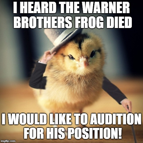 I HEARD THE WARNER BROTHERS FROG DIED I WOULD LIKE TO AUDITION FOR HIS POSITION! | image tagged in tuesday chicken | made w/ Imgflip meme maker