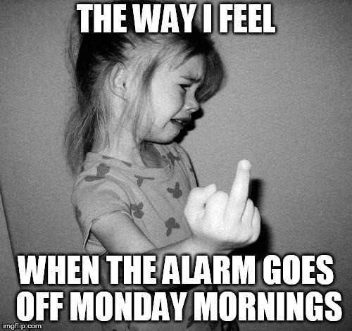 little girl crying | THE WAY I FEEL WHEN THE ALARM GOES OFF MONDAY MORNINGS | image tagged in little girl crying | made w/ Imgflip meme maker