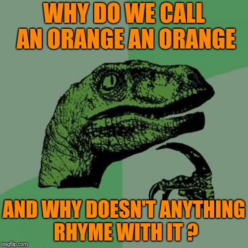 Philosoraptor Meme | WHY DO WE CALL AN ORANGE AN ORANGE AND WHY DOESN'T ANYTHING RHYME WITH IT ? | image tagged in memes,philosoraptor | made w/ Imgflip meme maker