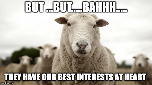 BUT ...BUT.....BAHHH..... THEY HAVE OUR BEST INTERESTS AT HEART | made w/ Imgflip meme maker
