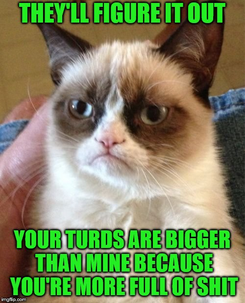 Grumpy Cat Meme | THEY'LL FIGURE IT OUT YOUR TURDS ARE BIGGER THAN MINE BECAUSE YOU'RE MORE FULL OF SHIT | image tagged in memes,grumpy cat | made w/ Imgflip meme maker