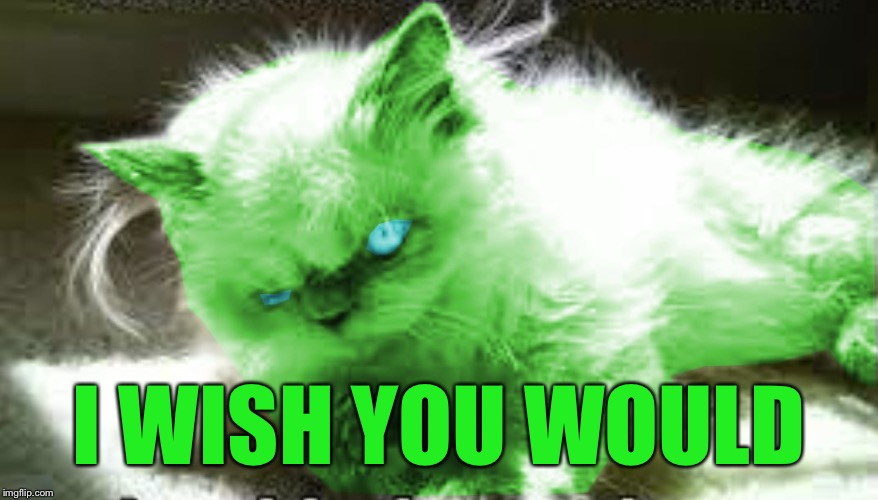 mad raycat | I WISH YOU WOULD | image tagged in mad raycat | made w/ Imgflip meme maker
