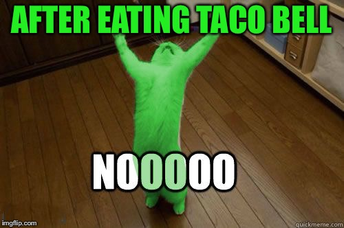 RayCat Noooooo | AFTER EATING TACO BELL | image tagged in raycat noooooo | made w/ Imgflip meme maker