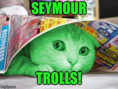 RayCat Scared | SEYMOUR TROLLS! | image tagged in raycat scared | made w/ Imgflip meme maker