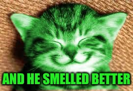 happy RayCat | AND HE SMELLED BETTER | image tagged in happy raycat | made w/ Imgflip meme maker