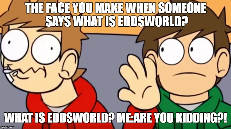 When people ask what is Eddsworld... | THE FACE YOU MAKE WHEN SOMEONE SAYS WHAT IS EDDSWORLD? WHAT IS EDDSWORLD? ME:ARE YOU KIDDING?! | image tagged in eddsworld | made w/ Imgflip meme maker