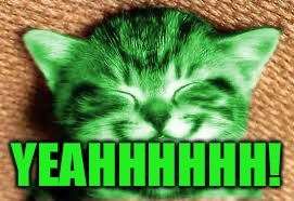 happy RayCat | YEAHHHHHH! | image tagged in happy raycat | made w/ Imgflip meme maker