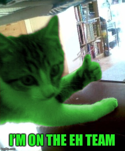 thumbs up RayCat | I'M ON THE EH TEAM | image tagged in thumbs up raycat | made w/ Imgflip meme maker